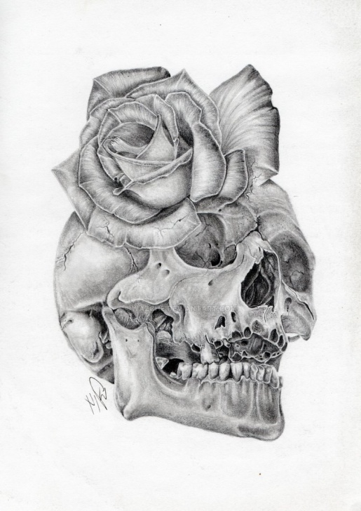 The Best Pencil Drawings Skulls Simple Skull Rose Morph Graphite Pencil Drawing By Wazche On Deviantart Pic