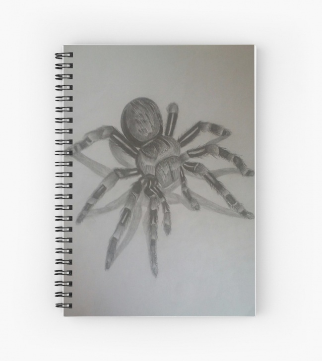 The Best Spider Pencil Drawing Free '3D Spider Pencil Drawing' Spiral Notebook By Theju Picture