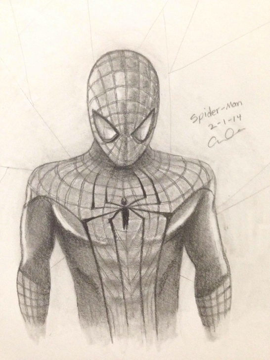 The Amazing Spider Man Drawing In Pencil
