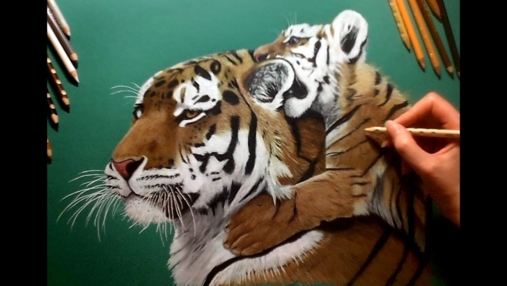 The Best Tiger Colored Pencil Drawing Simple Tiger Cub Pencil Sketch And Colored Pencil Drawing On Green Paper Images