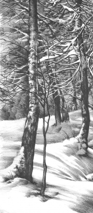 "The Best Winter Pencil Drawings Ideas Pencil Drawing Of ""winter Wonderland"" On Behance 