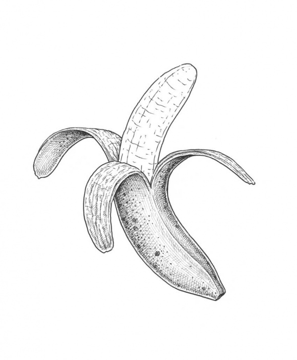 The Complete Banana Pencil Drawing Easy How To Draw A Banana Image