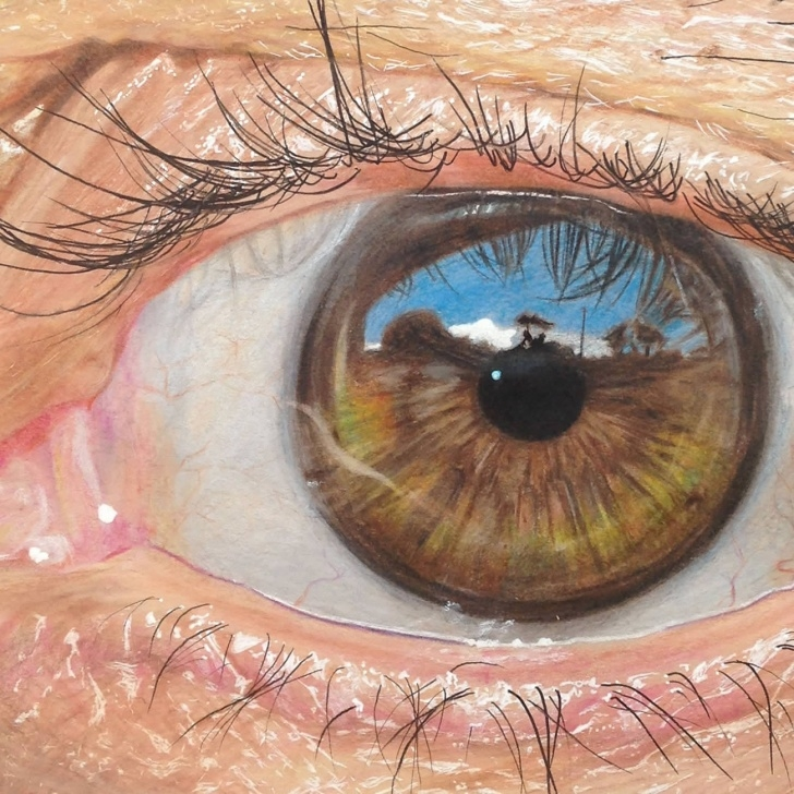 The Complete Colored Pencil Eye Drawing Step by Step Hyperrealistic Eyes Drawn With Colored Pencils | Colossal Pictures
