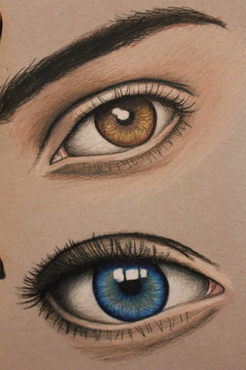 The Complete Colored Pencil Eye Drawing Techniques Images For > Eye Drawing Color Pencil | Eyes | Colored Pencils Picture
