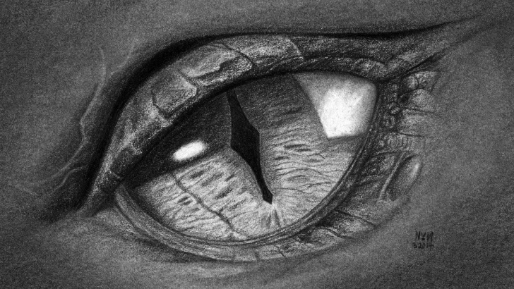 The Complete Dragon Eye Pencil Drawing Techniques How To Draw A Dragon's Eye -Close Up! | Drawing Competition Carramar Pic