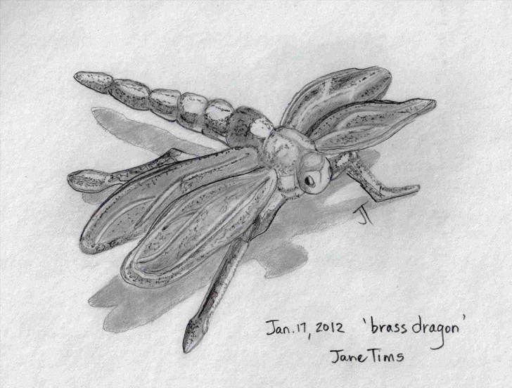 The Complete Dragonfly Pencil Drawing Lessons Dragon-Pencil-Drawing-Of-Dragonfly-Step-By-Step-Fly-S-Dragonflies-U Photos