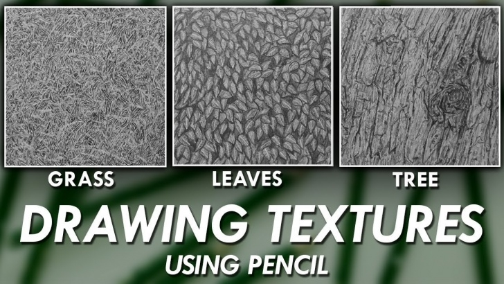 The Complete Drawing Grass With Pencil Techniques How To Draw Realistic Textures Using Pencils! - Grass, Leaves & Tree Bark Images