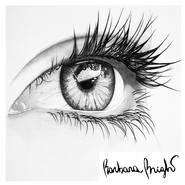 """The Complete Eye Pencil Sketch for Beginners Saatchi Art Artist: Barbara Bright; Pencil 2013 Drawing """"dream Pictures"""