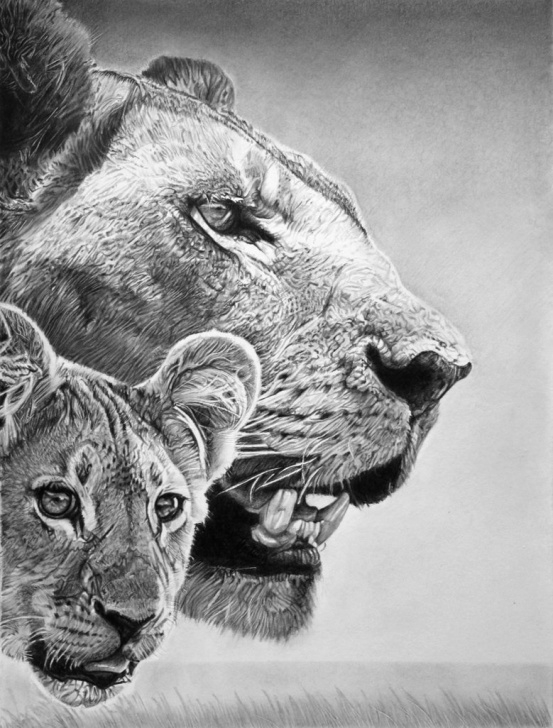 The Complete Franco Clun Art Ideas Astonishing Pencil Illustrations By Franco Clun Pictures