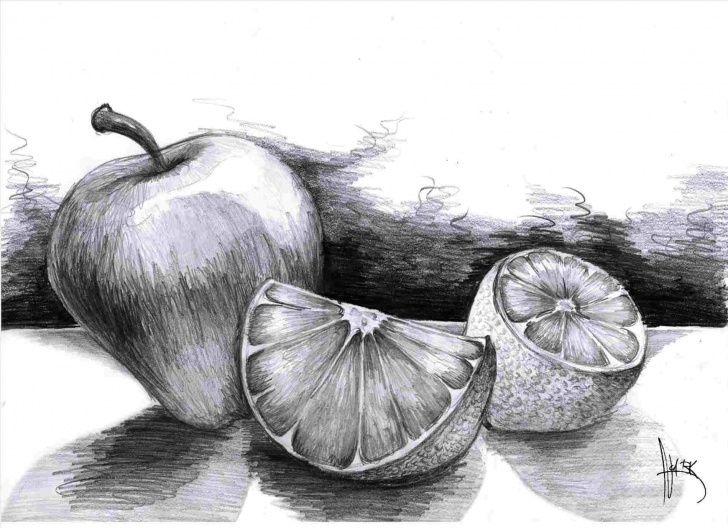 The Complete Fruits Pencil Shading Courses Orange Pencil Shading Pic