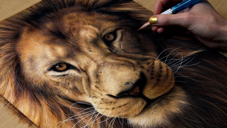 The Complete Lion Colored Pencil Drawing Techniques for Beginners Drawing A Lion Images