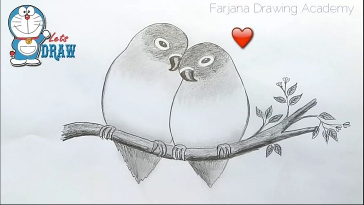 The Complete Love Birds Pencil Sketch for Beginners How To Draw Two Parrots In Love By Pencil Sketch Images
