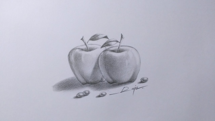 "The Complete Pencil Sketch Of Apple Easy Learn Pencil Shade And ""smudging"" Techniques Of The Apples Pic"