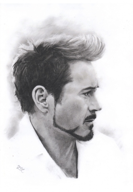 The Complete Robert Downey Jr Pencil Sketch Simple Robert Downey Jr Drawing, Pencil, Sketch, Colorful, Realistic Art Photos