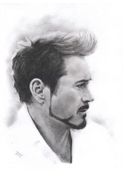 The Complete Robert Downey Jr Pencil Sketch Simple Robert Downey Jr Drawing, Pencil, Sketch, Colorful, Realistic Art Photos