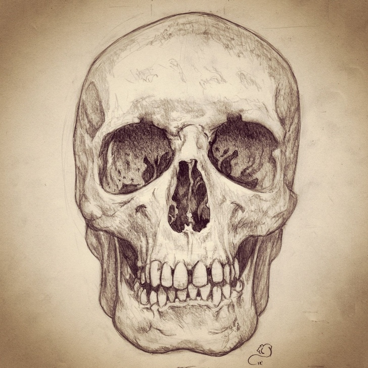 The Complete Skull Pencil Drawings Techniques for Beginners Pencil Sketch Of Human Skull | Skulls | Skull, Skull Art, Drawings Pictures