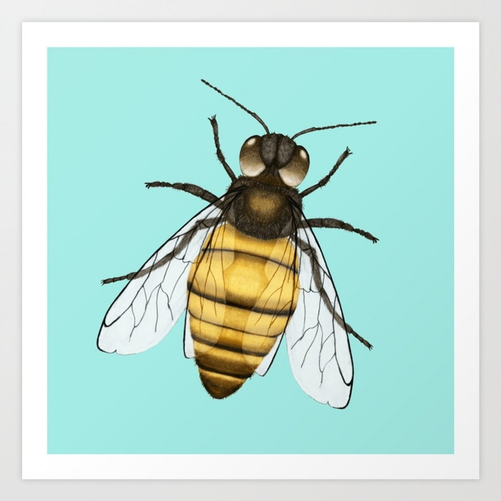 The Most Famous Bee Pencil Drawing Easy Bee Pencil Drawing Color Version Art Print Images