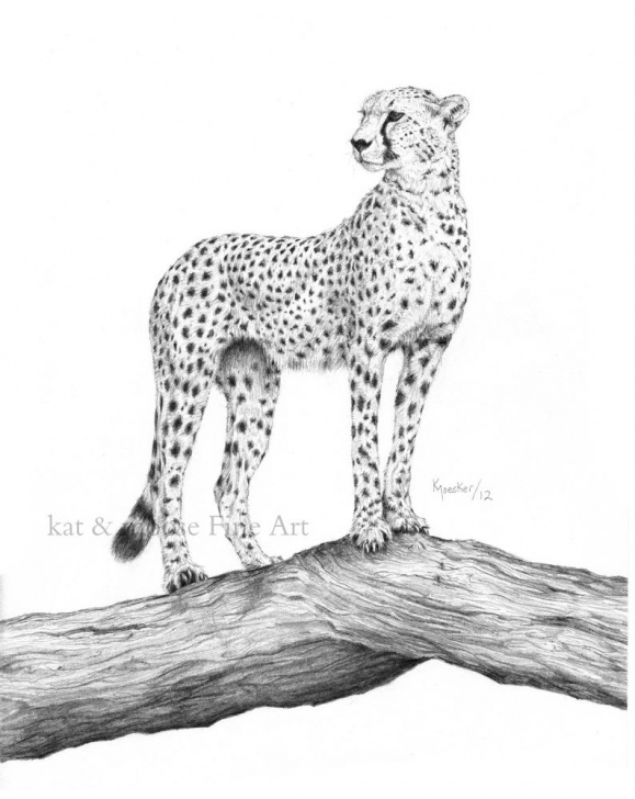 "The Most Famous Cheetah Pencil Drawing Techniques Cheetah - Pencil Drawing Print - 8X10"" Photos"