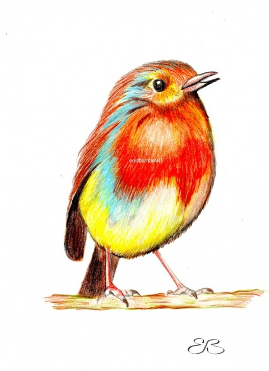 The Most Famous Cute Colored Pencil Drawings Techniques Bird, Small Bird, Fat Cute Bird, Color Pencil Drawing, Painting,wall  Hanging , Cute Birdie Images