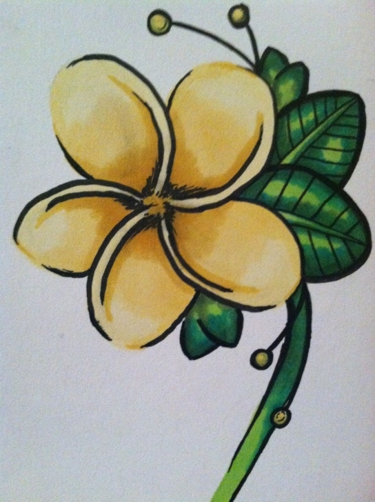 The Most Famous Easy Prismacolor Drawings Courses How To Color A Simple Leaves With Prismacolor Markers Pics