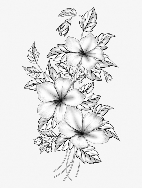 The Most Famous Floral Pencil Drawings Simple Floral Design Cut Flowers Drawing Branch /m/02Csf - Flower Pencil Pic