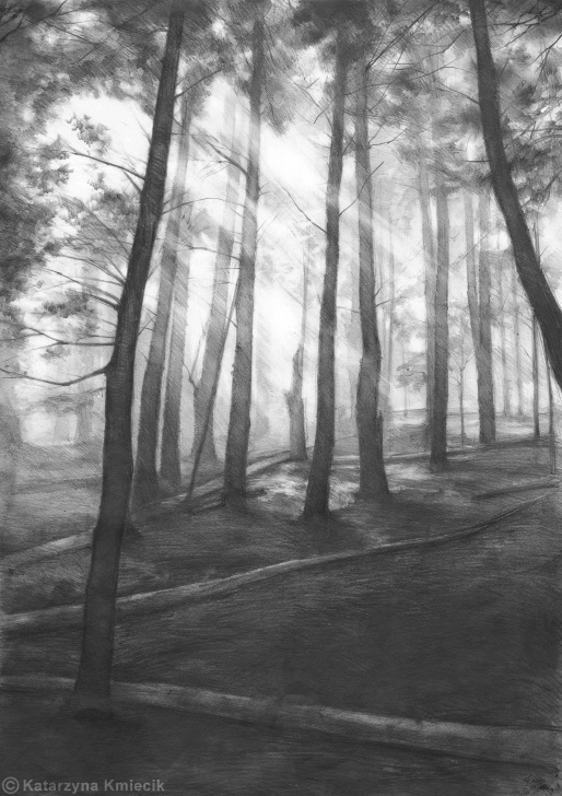 The Most Famous Forest Pencil Drawing Free Dark Forest Print By Katarzyna Kmiecik / Pencil Forest, Landscape Images