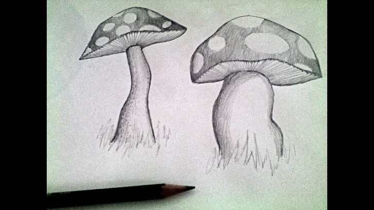 The Most Famous Mushroom Drawings Pencil Easy Mushroom Pencil Drawing Tutorial Pic