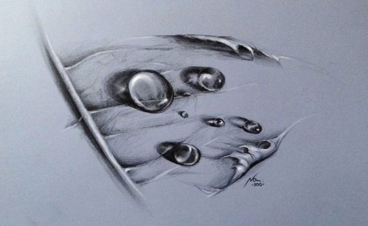 The Most Famous Water Drop Pencil Drawing Techniques for Beginners Pencil Drawing Water Drops | Art | Pencil Drawings, Drawings, Pencil Images
