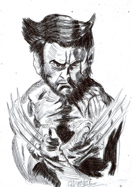 The Most Famous Wolverine Pencil Sketch Free Wolverine Drawing, Pencil, Sketch, Colorful, Realistic Art Images Images