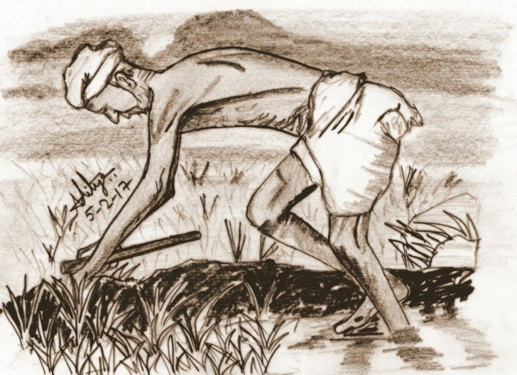 Top Agriculture Pencil Drawing Free Farmer   Pencil Sketches In 2019   Sketches, Pencil, Farmer Picture