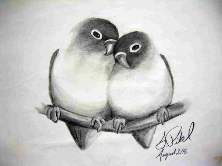 Top Beautiful Pencil Drawings Of Love Simple Beautiful Pencil Drawings Of Love Birds Photos