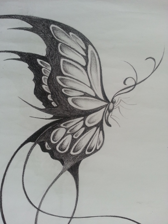 Top Butterfly Pencil Art Lessons Original Design Of A Large Butterfly | Things I Like :) In 2019 Picture