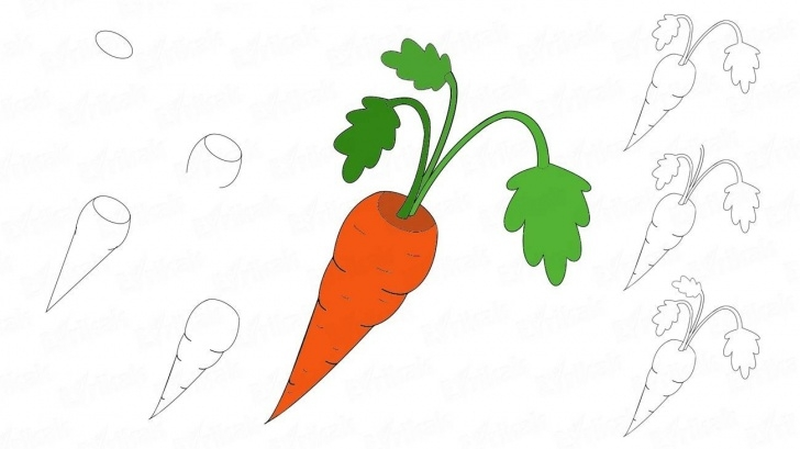 Top Carrot Pencil Drawing Lessons How To Draw A Carrot For A Child In Stages Picture