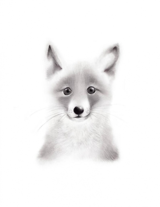Top Fox Pencil Sketch Techniques for Beginners Fox Nursery Art, Pencil Drawing, Baby Animal Face, Woodland Print, Fox  Drawing, Fox Sketch Portrait, Gender Neutral Baby, Forest Artwork Pictures