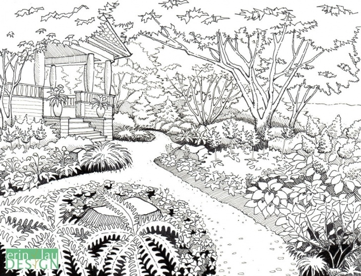 Top Garden Pencil Drawing Lessons Garden Pencil Sketch And Garden Drawing Details | Drawntogarden - 7+ Picture