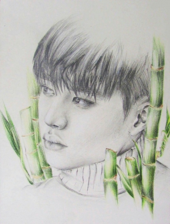 Top Graphite And Colored Pencil Drawing for Beginners Graphite And Colored Pencil Drawing Of Do Kyungsoo From Exo Image