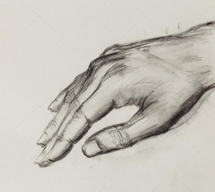 Top Hand Pencil Drawing for Beginners Drawing Hand, Pencil Sketch On Old Paper. — Stock Photo Images