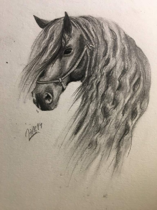 Top Horse Pencil Shading Ideas Friesian Horse Drawing - Pencil Shading | Star Stable Online Amino Photos