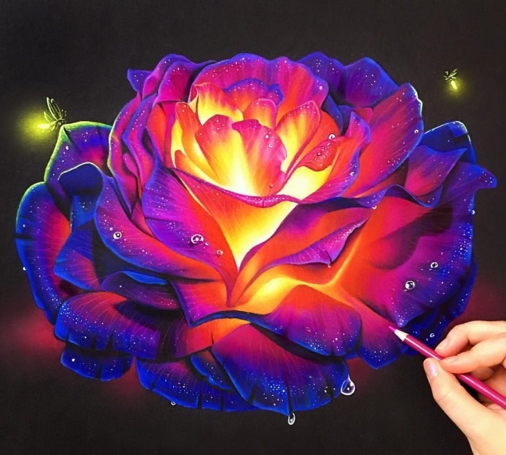 Top Prismacolor On Black Paper Courses Colored Pencil Glowing Rose On Black Paper! ✨ The Best Way To Get Image