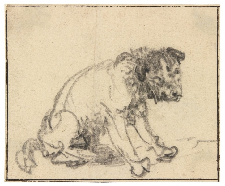 Top Rembrandt Pencil Drawings Simple German Museum Discovers New Rembrandt Drawing | Artnet News Picture