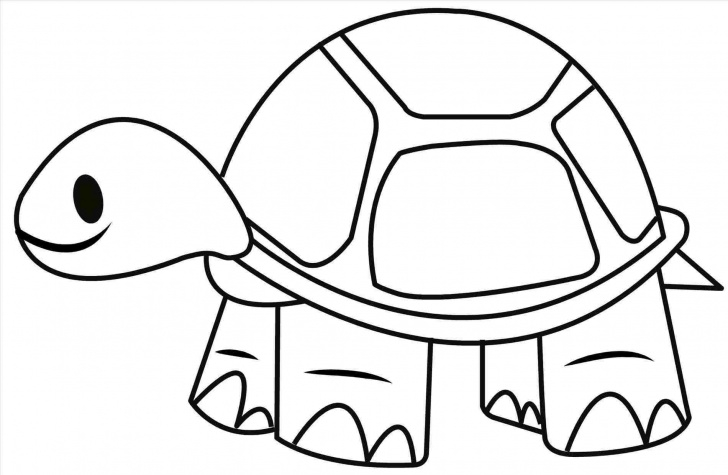 Top Tortoise Pencil Drawing Easy Tortoise Drawing At Paintingvalley | Explore Collection Of Pictures