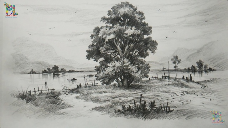 Top Tree Pencil Shading Step by Step How To Draw And Shade A Tree In A Beautiful Landscape With Pencil | Step By  Step Photo