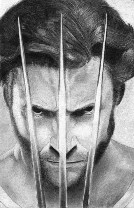Top Wolverine Pencil Sketch Lessons Pencil Drawing Of Wolverine At Paintingvalley | Explore Photos