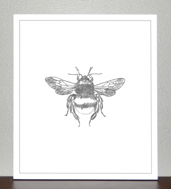 Wonderful Bee Pencil Drawing Free Pin By Erica Preler On Tattooscapes | Bee Sketch, Sketches, Pencil Images