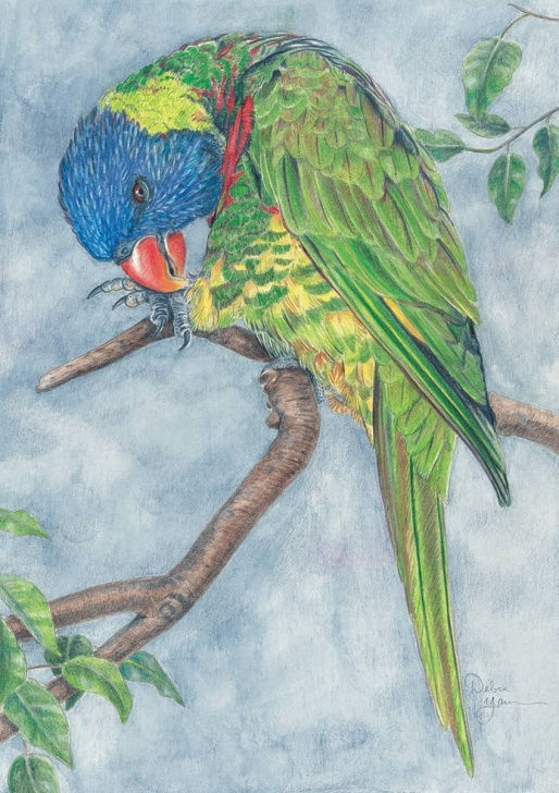 Wonderful Colored Pencil Animals Techniques for Beginners Drawing Animals In Colored Pencil - The Complete Beginner's Guide To Images