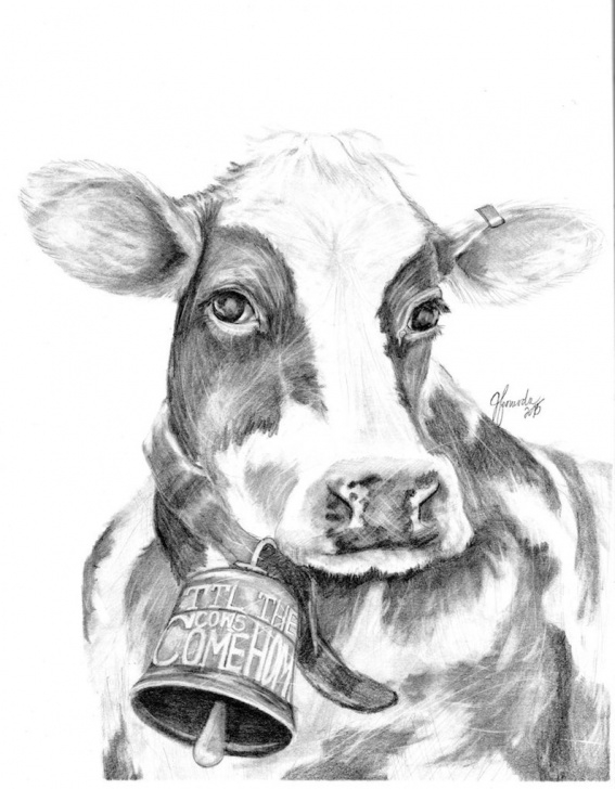 Wonderful Cow And Calf Pencil Drawing Tutorial Pencil Drawing Print - Til The Cows Picture