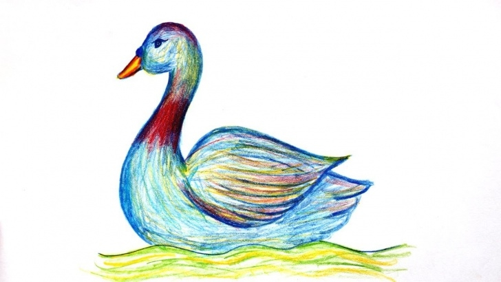 Wonderful Duck Pencil Drawing Tutorials Wood Pencil Art How To Draw A Duck Realistic Drawing By Hand Images