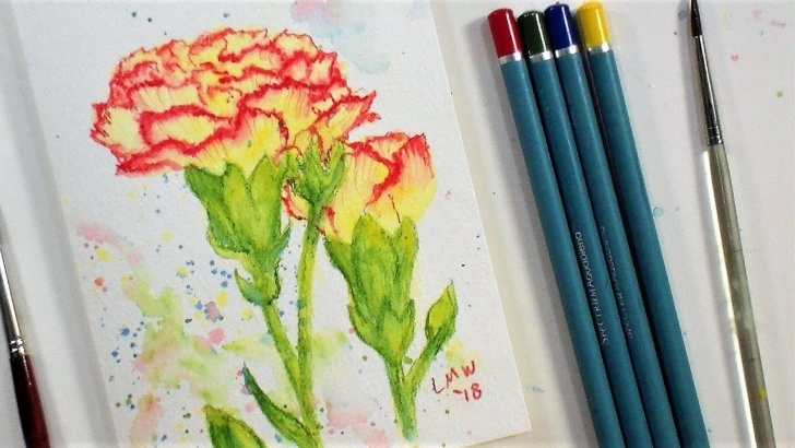 Wonderful Easy Watercolor Pencil Drawings Easy Carnation Flower Real Time Beginner Watercolor Pencil Tutorial (Only 4  Colors!) Pics