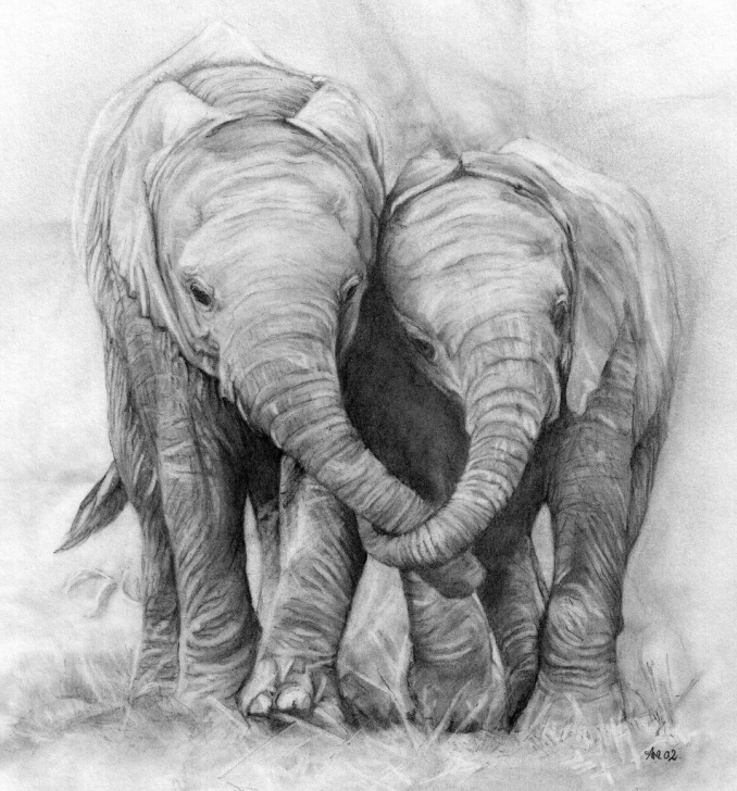 Elephant Pencil Art