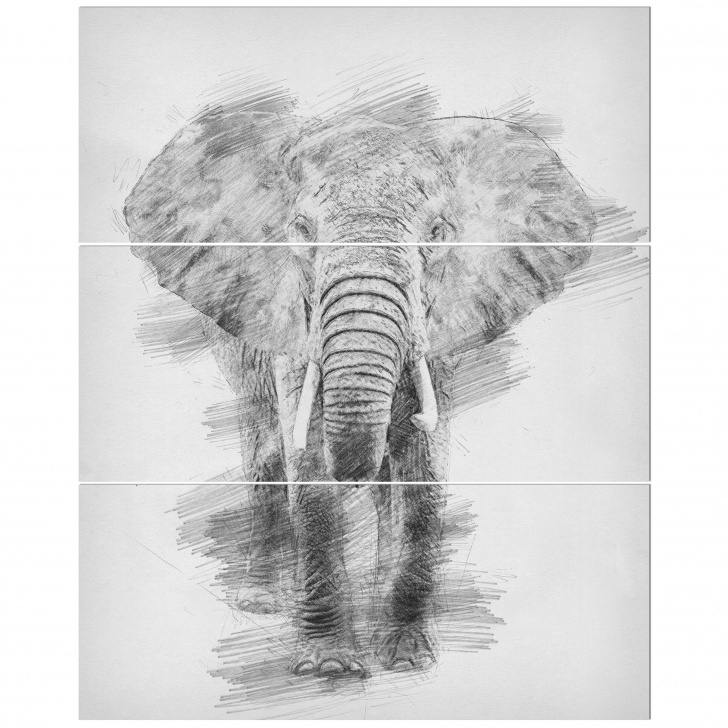 Wonderful Elephant Pencil Sketch Courses 'black And White Elephant Pencil Sketch' Drawing Print Multi-Piece Image On  Wrapped Canvas Picture